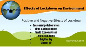 Effects of lockdown on environment essay